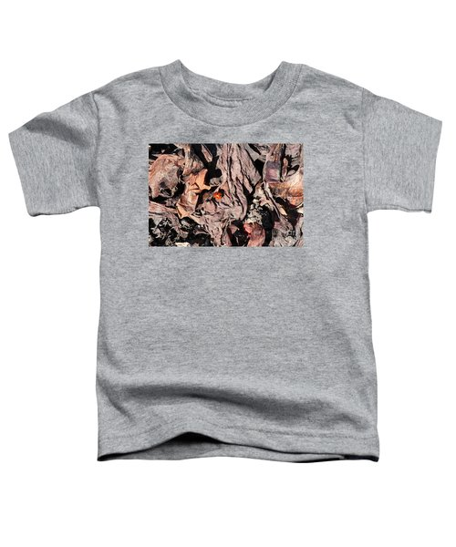 Lady Bug In Spring Toddler T-Shirt