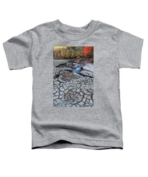 Lake No More Toddler T-Shirt