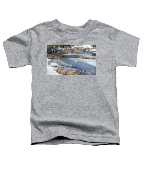 Last Days Of Winter Toddler T-Shirt