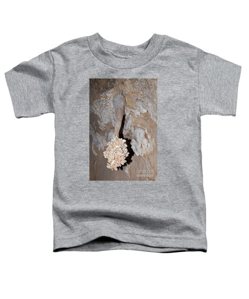 Lions Tail Carlsbad Caverns National Park Toddler T-Shirt