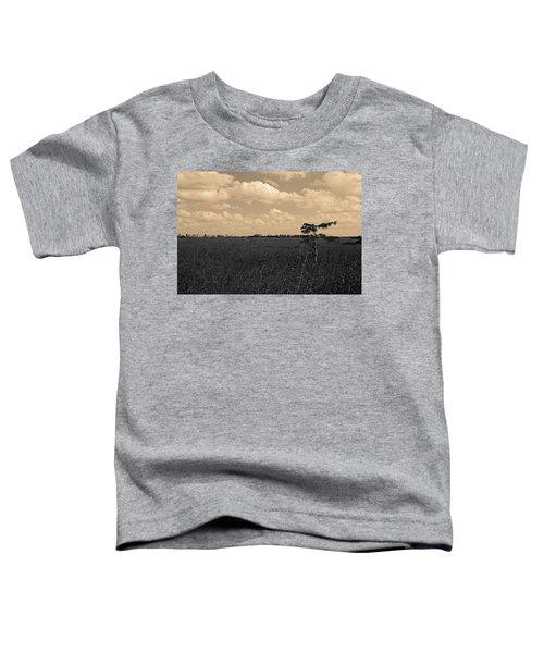 Lone Cypress II Toddler T-Shirt
