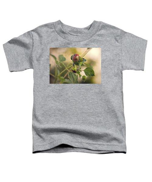 Lovebird On  Sunflower Branch  Toddler T-Shirt by Saija  Lehtonen