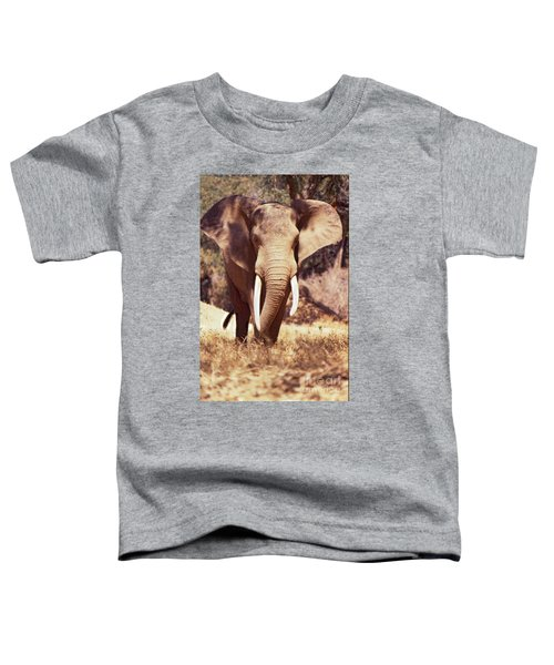Mana Pools Elephant Toddler T-Shirt