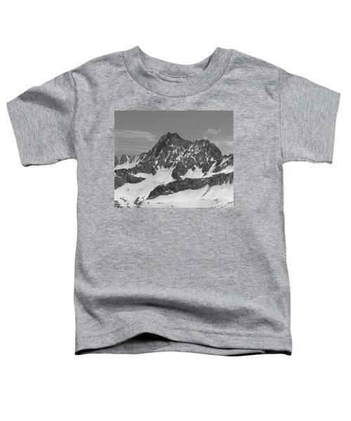 406429-e-middle Palisade Bw Toddler T-Shirt