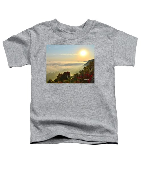Mississippi River Fog Toddler T-Shirt