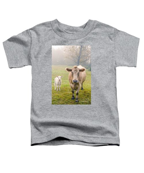 Momma And Baby Cow Toddler T-Shirt