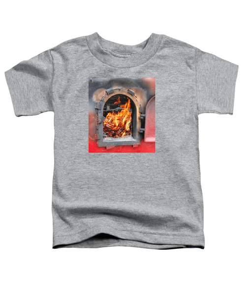 Money 2 Burn Toddler T-Shirt