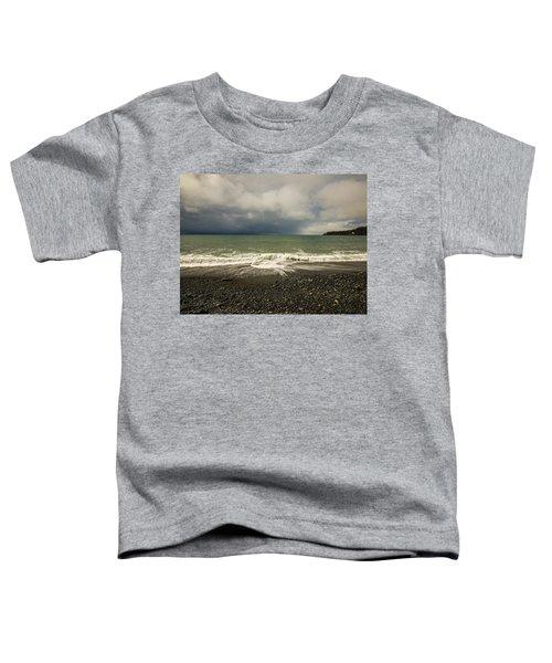 Moody Swirl French Beach Toddler T-Shirt