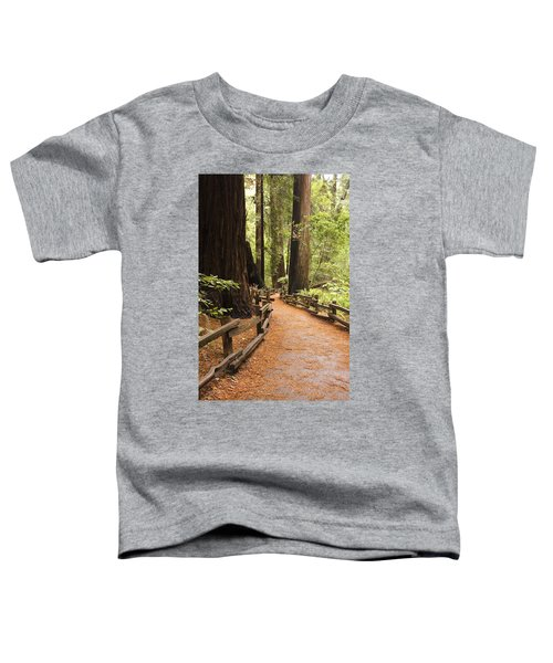 Muir Woods Trail Toddler T-Shirt