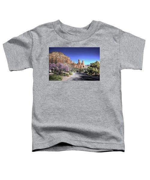 Mushroom Rock Toddler T-Shirt by Lynn Geoffroy