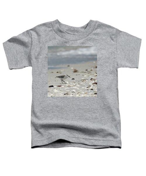 Nokomis Beach Piper Toddler T-Shirt