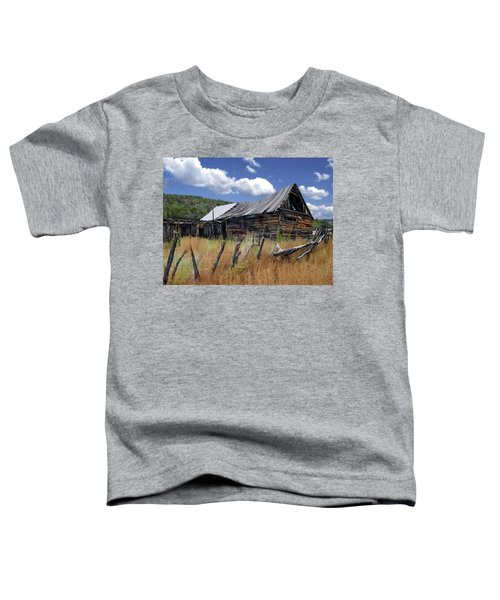 Old Barn Las Trampas New Mexico Toddler T-Shirt