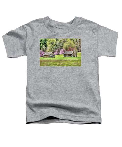 On A Hill At Valley Forge Toddler T-Shirt
