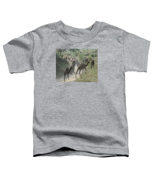 On The Road To Pushkar Toddler T-Shirt