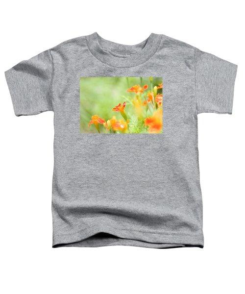 Orange Meadow Toddler T-Shirt