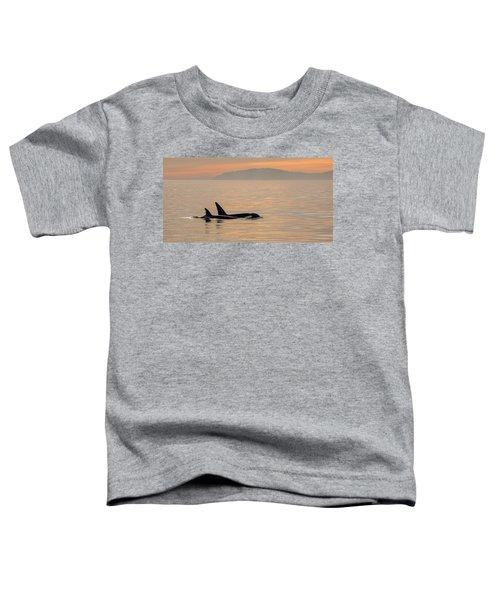 Orcas Off The California Coast Toddler T-Shirt