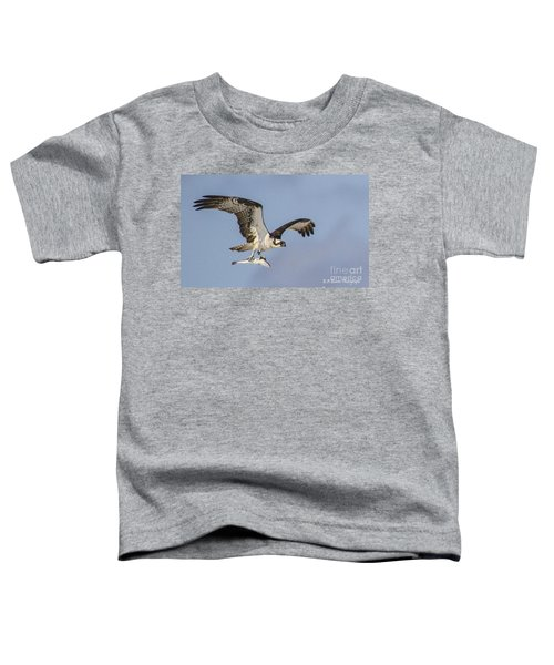 Osprey With Dinner Toddler T-Shirt
