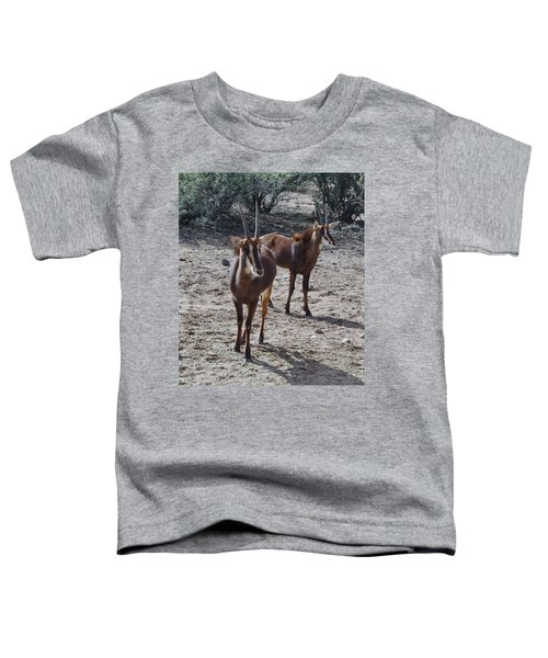 Out Of Africa B Toddler T-Shirt