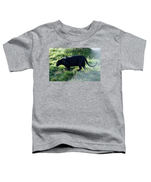 Out Of Africa  Black Panther Toddler T-Shirt
