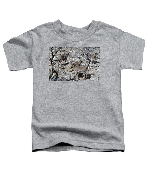 Out Of Africa  Mountain Goats Toddler T-Shirt