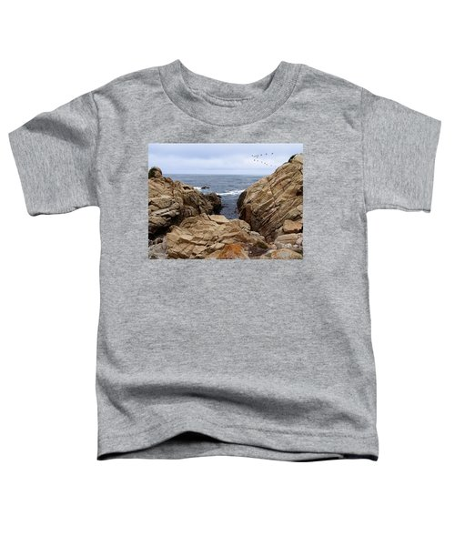 Overcast Day At Pebble Beach Toddler T-Shirt
