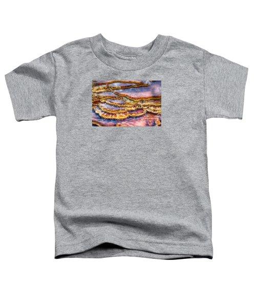 Pancakes Hot Springs Toddler T-Shirt
