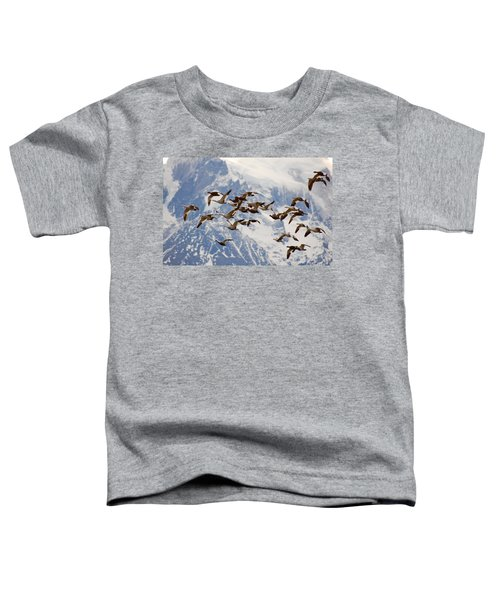 Patagonia Migration Toddler T-Shirt