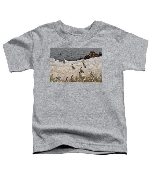 Pelicans Seals N Daisies  Toddler T-Shirt