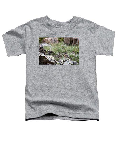 Pika  Toddler T-Shirt