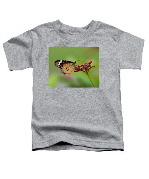 Plain Tiger Or African Monarch Butterfly Dthn0008 Toddler T-Shirt