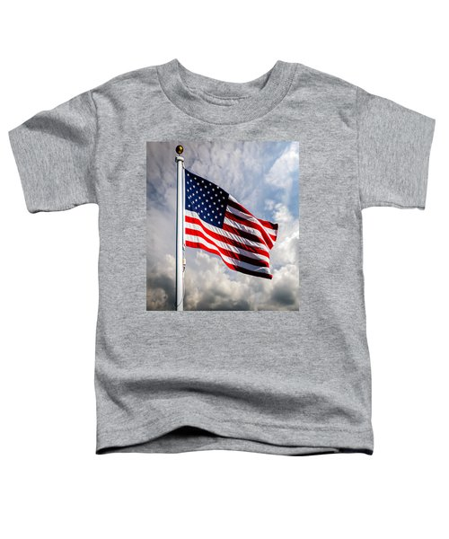 Portrait Of The United States Of America Flag Toddler T-Shirt