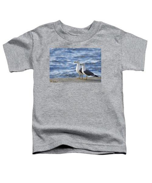 Posing Seagulls Toddler T-Shirt