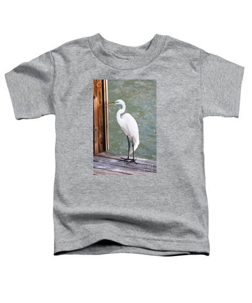 Pretty Great Egret Toddler T-Shirt