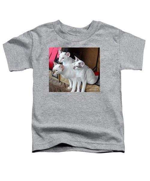 Prize Winning Triplets Toddler T-Shirt