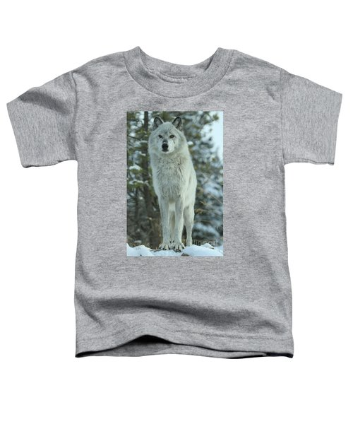 Queen Of The West Toddler T-Shirt