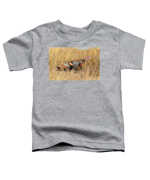 Rainbow Turkey Toddler T-Shirt