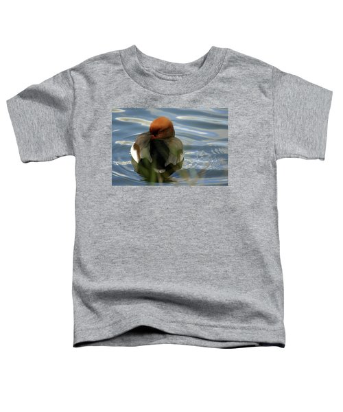 Red-crested Pochard -netta Toddler T-Shirt