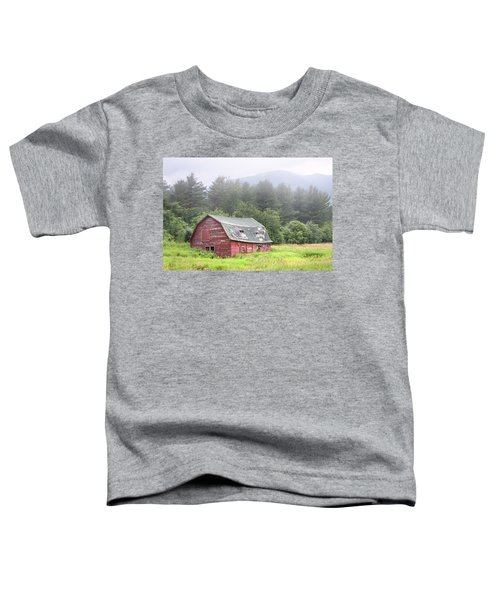 Rustic Landscape - Red Barn - Old Barn And Mountains Toddler T-Shirt