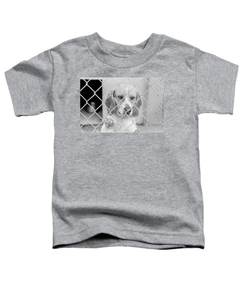 Sad Beagle Dog Looking Through Chain Toddler T-Shirt