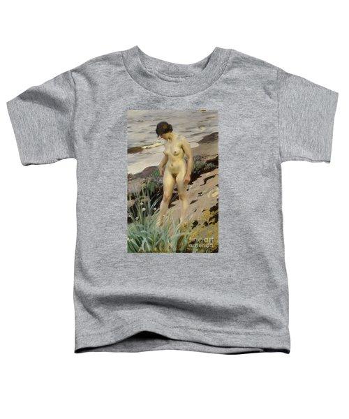 Sandhamn Study Toddler T-Shirt
