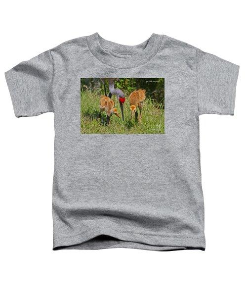 Sandhill Crane Family Feeding Toddler T-Shirt