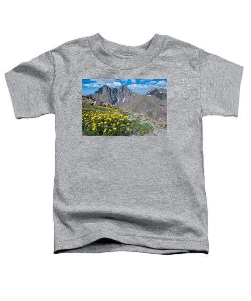 Sangre De Cristos Crestone Peak And Wildflowers Toddler T-Shirt