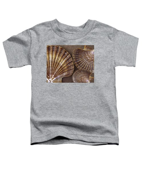 Seashells Spectacular No 7 Toddler T-Shirt