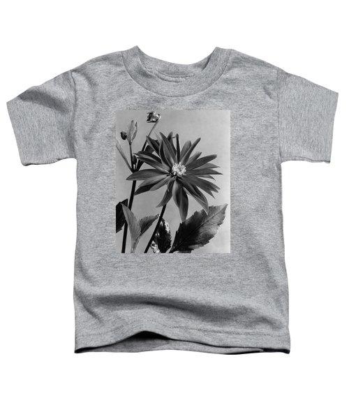 Semi-double Dwarf Pigmy Dahlia Flower Toddler T-Shirt
