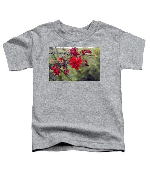 Sesbania Punicea Toddler T-Shirt