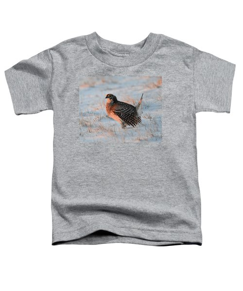 Sharptail Sunrise Toddler T-Shirt