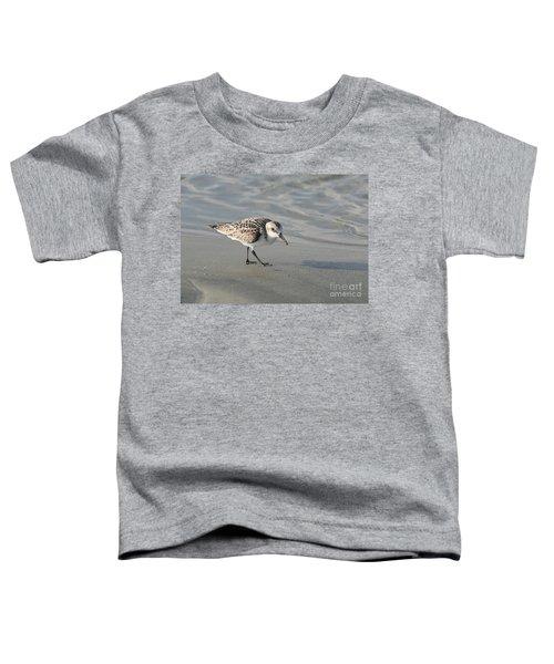 Shore Bird On Ocean Beach Toddler T-Shirt