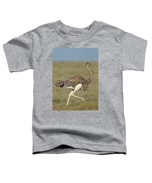 Side Profile Of An Ostrich Running Toddler T-Shirt