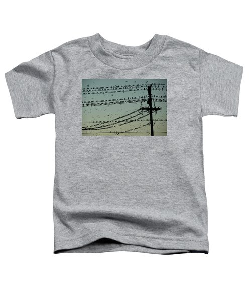 Silhouette Of Birds Gathering On Wires Toddler T-Shirt
