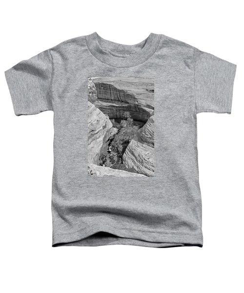 Sipapu Path Toddler T-Shirt
